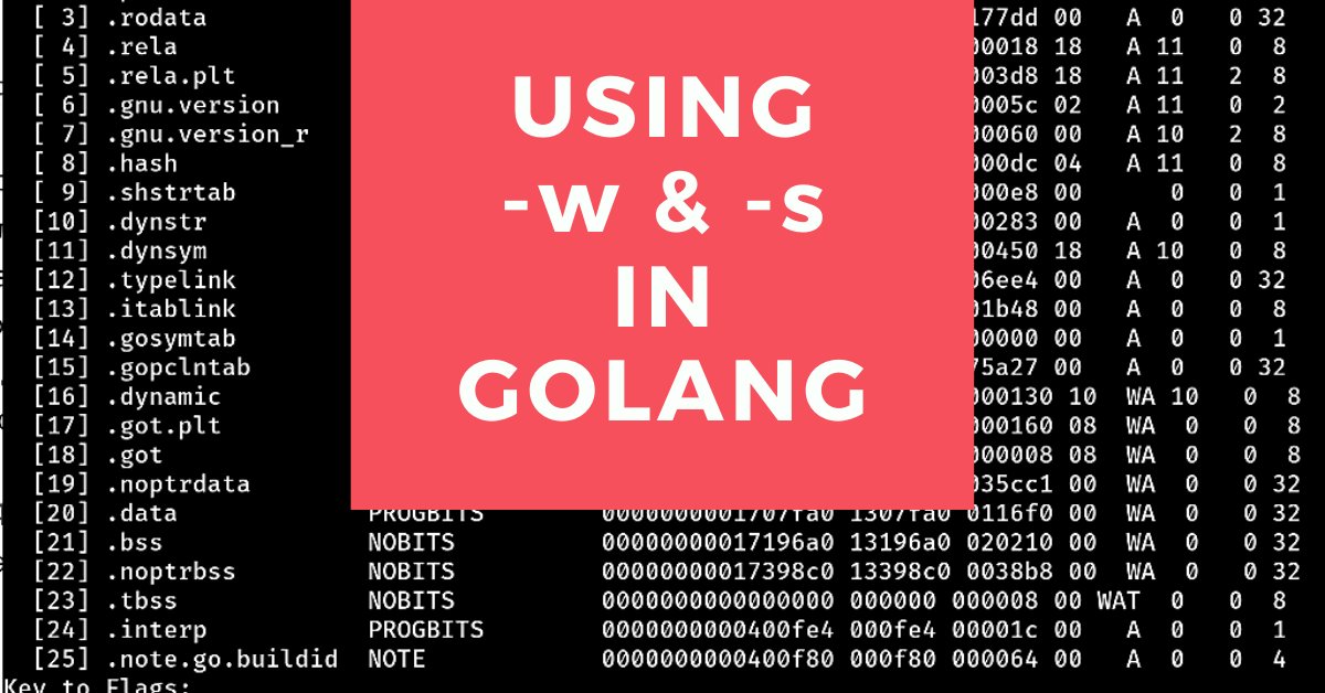 Using -w & -s flags in Golang testing