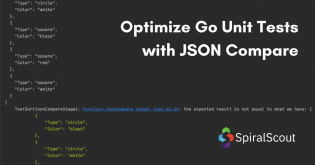 Go Unit Tests with JSON Compare