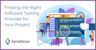 Software testing services